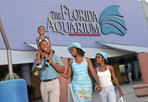 Tam-Florida_Aquar-family-VF.jpg